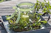 Maiengruen : Kranz aus Salix (Weide) auf Zink-Tablett