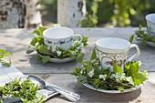 Maiengruen : Teetassen mit kleinen Kränzchen aus Zweigen von Betula