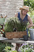 Frau bepflanzt Spankorb mit Kräutern