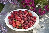 Teller mit frisch gepflückten Erdbeeren und Himbeeren