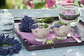Entspannungstee aus Lavendel (Lavandula), Blüten von Rosa (Rosen)