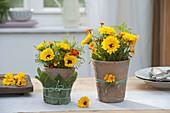 Straeusse aus Calendula (Ringelblumen)und Tagetes tenuifolia