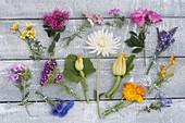 Tableau mit essbaren Blüten von Stauden, Gartenblumen und Gemüse