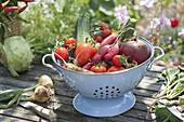 Frisch geerntete Gemüse in Küchensieb : Tomaten (Lycopersicon),
