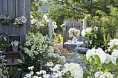 Terrasse mit weissen Pflanzen am Geräteschuppen