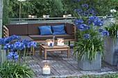 Terrasse im Abendlicht , Kübel mit Agapanthus (Schmucklilien), Windlichter