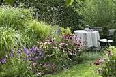 Schattiger Sitzplatz unter Salix (Weide) am Prairiebeet
