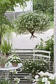 Weiss bepflanzter kleiner Balkon