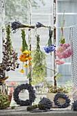 Kräuter und Blumen am Fenster trocknen