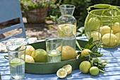 Tablett und Korb mit frisch gepflueckten Zitronen (Citrus limon), Krug