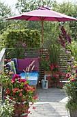 Gemuetliche Lounge-Ecke unterm Sonnenschirm, Pelargonium (Geranien)
