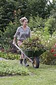 Frau fährt Schubkarre mit Rückschnitt von Stauden und Blumen