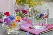 Eiswürfel mit eingefrorenen, essbaren Blüten in Gläsern