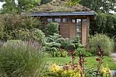 Spaetsommerbeet am Gartenhaus mit Dachbegrünung
