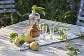 Birne für Birnenschnaps in Flasche ziehen
