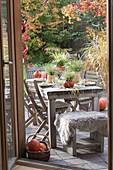 Herbstliche Kürbis-Tischdeko mit Gräsern