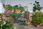 Kleine Sitzecke mit Kuebelpflanzen an der Hauswand neben Brennholz : Pelargonium (Geranien), Abutilon (Schönmalve), Tisch und Stühle