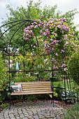 Mit Rosa (Kletterrosen) bepflanzte Laube, kleine , runde mit Granit gepflasterte Terrasse, Bank