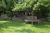 Schattiger Sitzplatz auf Baumbank unterm Apfelbaum (Malus) im Rasen, Hangbeete mit Gehoelzen und Stauden, abgestützt mit Mauern aus Natursteinen, Treppe zum Haus