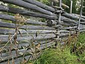 Österreichischer Viehweidezaun in den Tiroler Alpen, sehr stabil gebaut damit er auch im Winter Schneeverwehungen abhält
