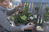 Winterfest bepflanzte Kupferschale auf Holzbank