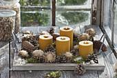 Schnelle, natürliche Adventsdeko mit gelben Kerzen auf Holz-Tablett