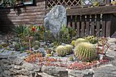 Aus Natursteinen gemauertes Hochbeet mit Kies und Schotter zum Einsenken von Kakteen und Sukkulenten im Sommer