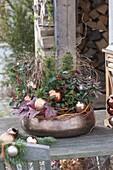 Kupferne Schale bepflanzt mit Ilex (Stechpalme), Carex petriei 'Bronce Form'