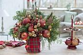 Weihnachtsstrauss aus Zweigen von Abies (Tanne) und Pinus (Kiefer)