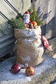 Nikolaus-Säckchen mit Äpfeln (Malus), Nüssen (Juglans), Mandarine