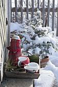 Tablett mit Thermoskanne und Bechern im winterlichen Garten
