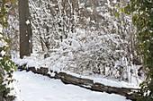 Verschneite Sträucher im winterlichen Garten