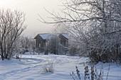 Spur durch den verschneiten Garten, Blick auf Teehaus mit Rosenbogen