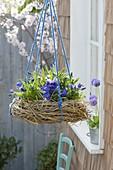 Kranz aus Zweigen und Gräsern als blau bepflanztes Nest aufgehängt