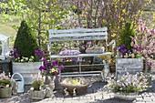 Osterterrasse mit bepflanzten Gefaessen und Gartenbank