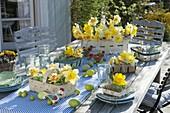 Ostertischdeko mit Narzissen auf der Terrasse