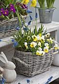 Osterterrasse mit selbstgebauter Blumentreppe