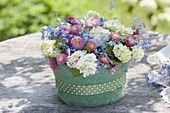 Blumentorte im Filz-Mantel : Blüten von Viburnum (Schneeball), Myosotis