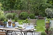 Kräuter in Toepfen und frisch geerntet in Sieb auf dem Tisch