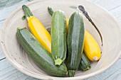 Frisch geerntete grüne und gelbe Zucchini in Schüssel