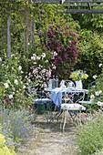 Sitzplatz am Rosenpavillon mit Rosa 'New Dawn' vorne links, 'Rosenholm'
