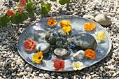 Flache Zinkschale mit essbaren Blüten und Kieselsteinen im Wasser