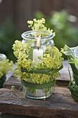 Einmachglas zweckentfremdet als Windlicht, Blüten von Alchemilla