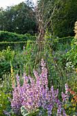 Painswick Rococo Garden, Gloucestershire: THE KITCHEN Garden