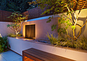 FULHAM Garden DESIGNED by AMIR SCHLEZINGER - MY LANDSCAPES: Minimalist Garden LIT UP at NIGHT - EDGEWORTHIA CHRYSANTHA, Acer ACONITIFOLIUM, RAISED BED, Water Feature