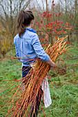 COMMON Farm FLOWERS. Somerset