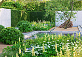 CHELSEA FLOWER Show 2014: LAURENT Perrier Garden by LUCIANO GIUBBILEI - Metal Water RILL with Pool AND PLANTING of Lupinus AND ORLAYA GRANDIFLORA