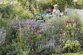 Blau - violettes Beet und Sitzplatz im Naturgarten