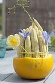 Junge Maiskolben (Zea mays) zusammengebunden und mit Blüten