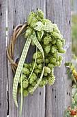 Kranz aus Hopfenrebe , Hopfendolden seitlich in Traubenform gebunden